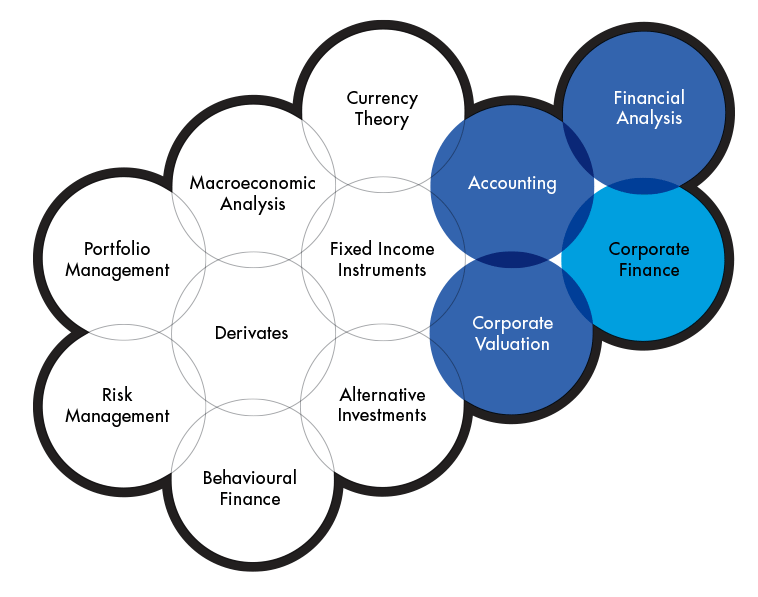 Graphics showing the subjects included in the Investment analysis program