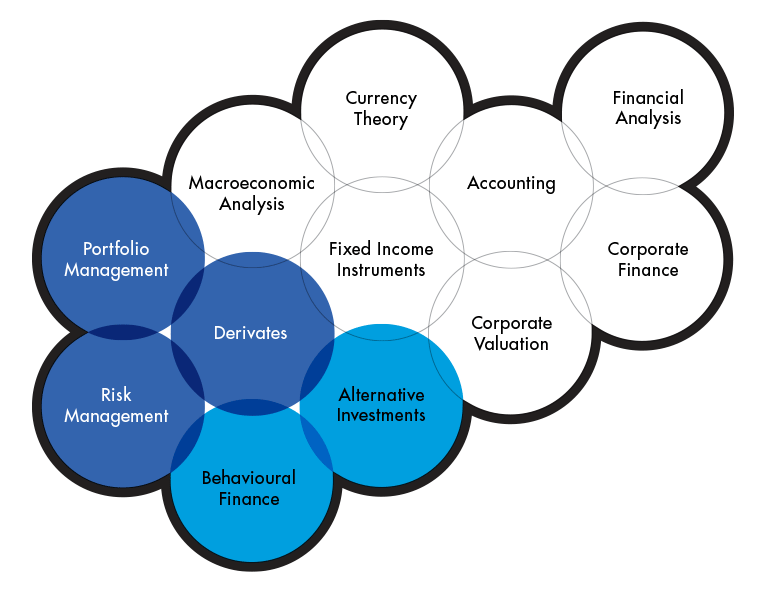 Graphics showing the subjects included in the The Portfolio and Risk Management program