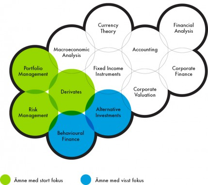 Graphics showing subjects covered by the executive education Portfolio and Risk Management.